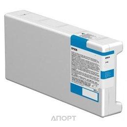 Epson C13T699000