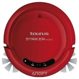 Taurus Striker Mini