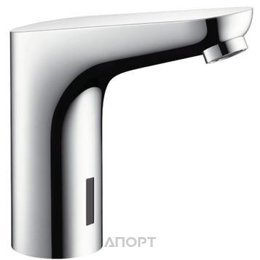 Hansgrohe Focus 31174000