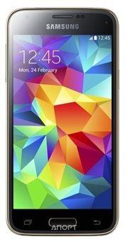 Фото Samsung Galaxy S5 mini Duos SM-G800H